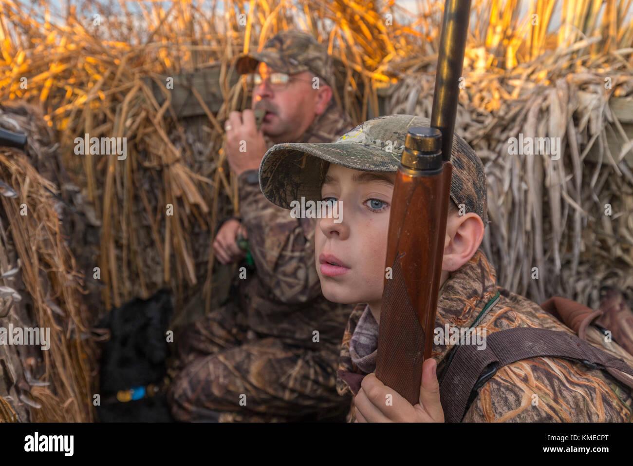 father and son duck hunting, Suisun Marsh, Suisun City, California, USA - Stock Image