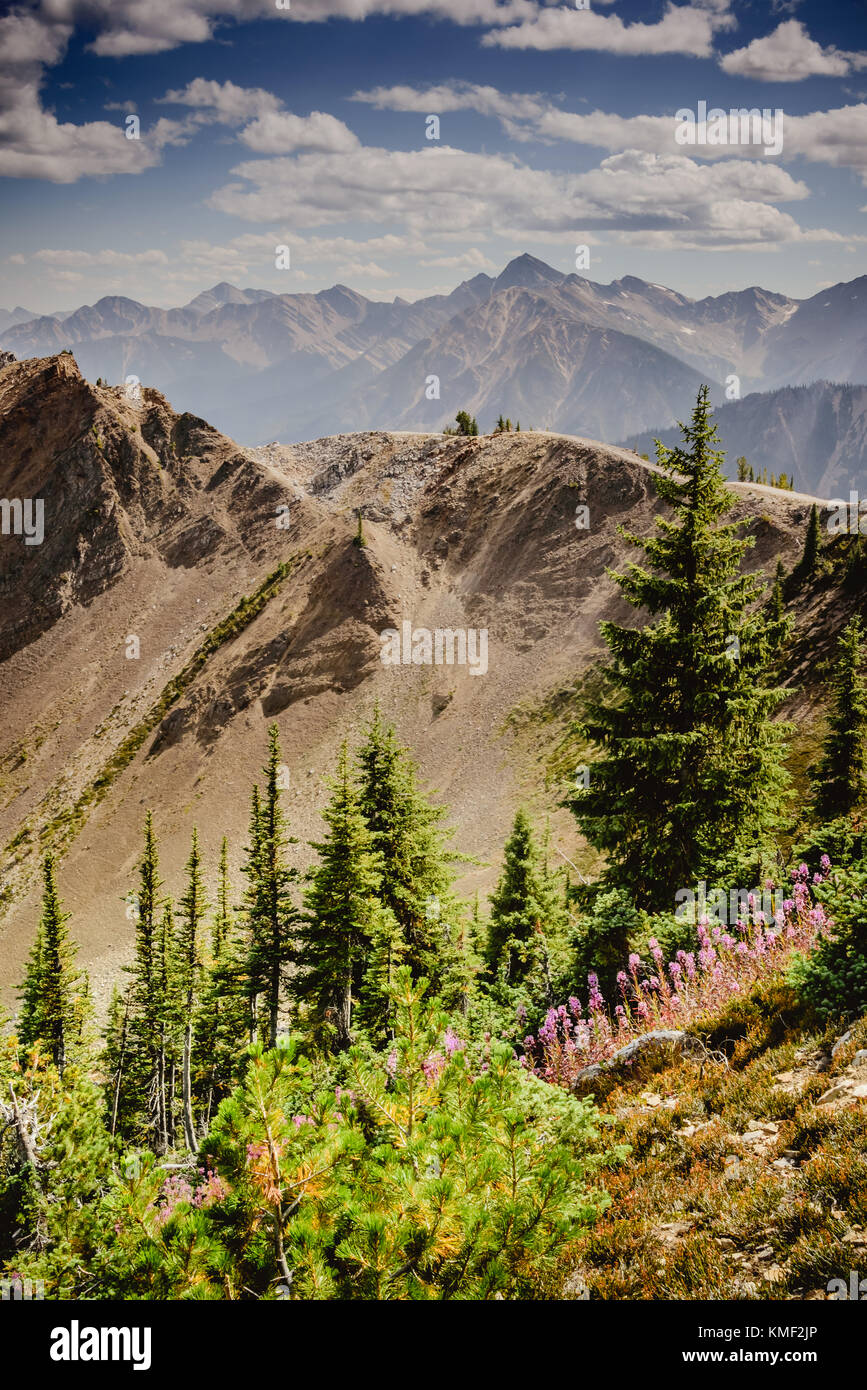 View from Kicking Horse mountain in BC Canada in summer - Stock Image