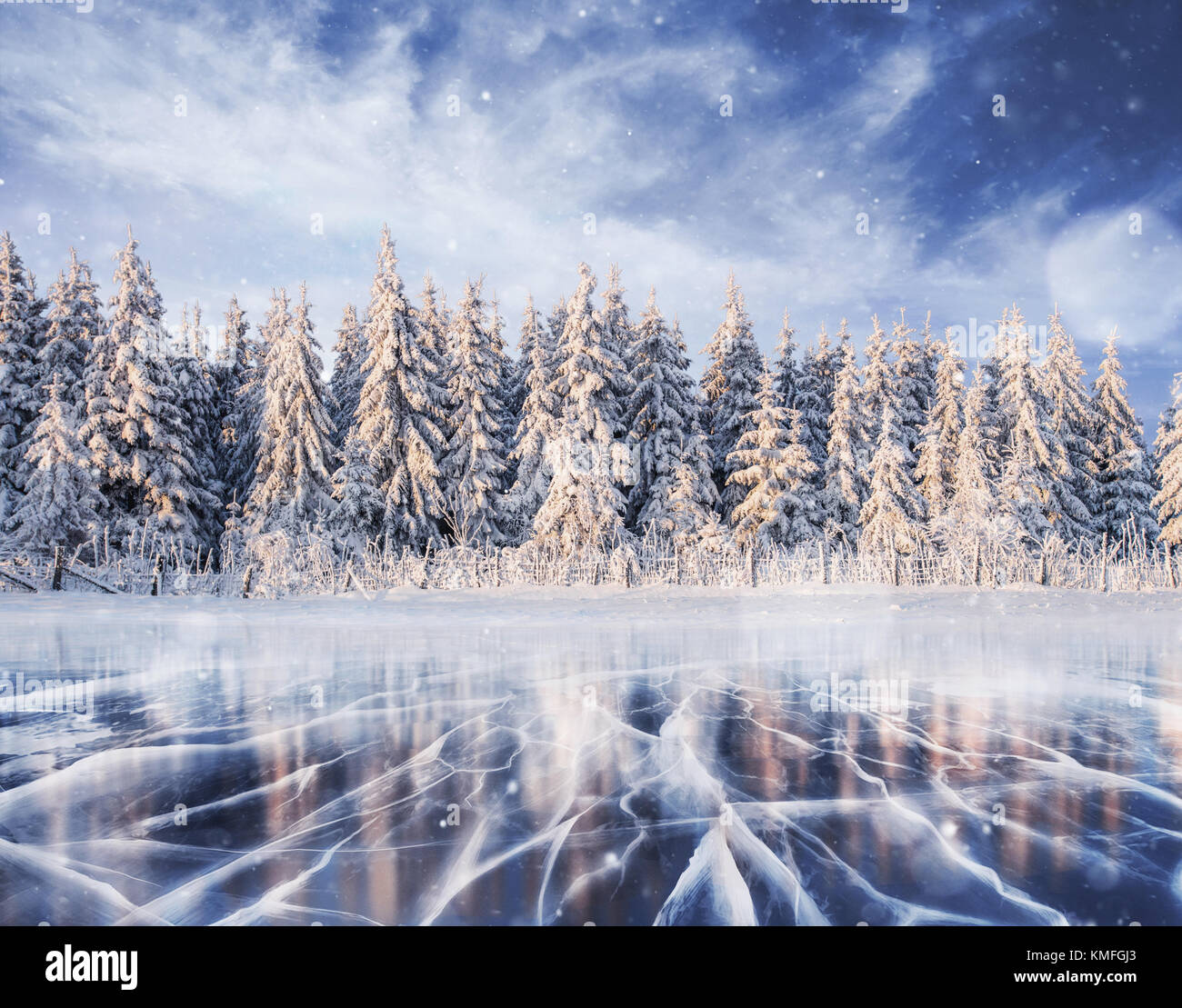 magical winter snow covered tree. Winter landscape. - Stock Image