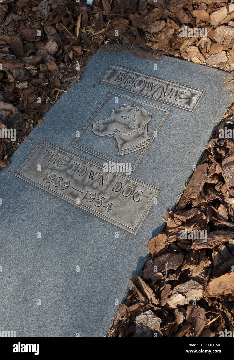 The grave of Brownie the town dog, in Daytona Beach, Florida, USA. - Stock Image