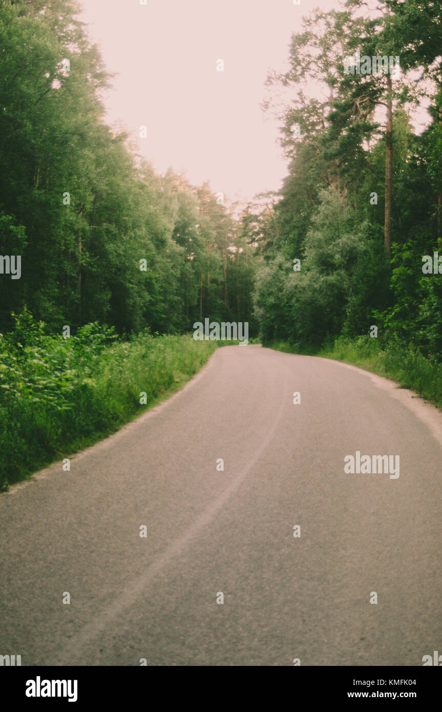 Green forest Road trip. Summer time. Latvia. - Stock Image