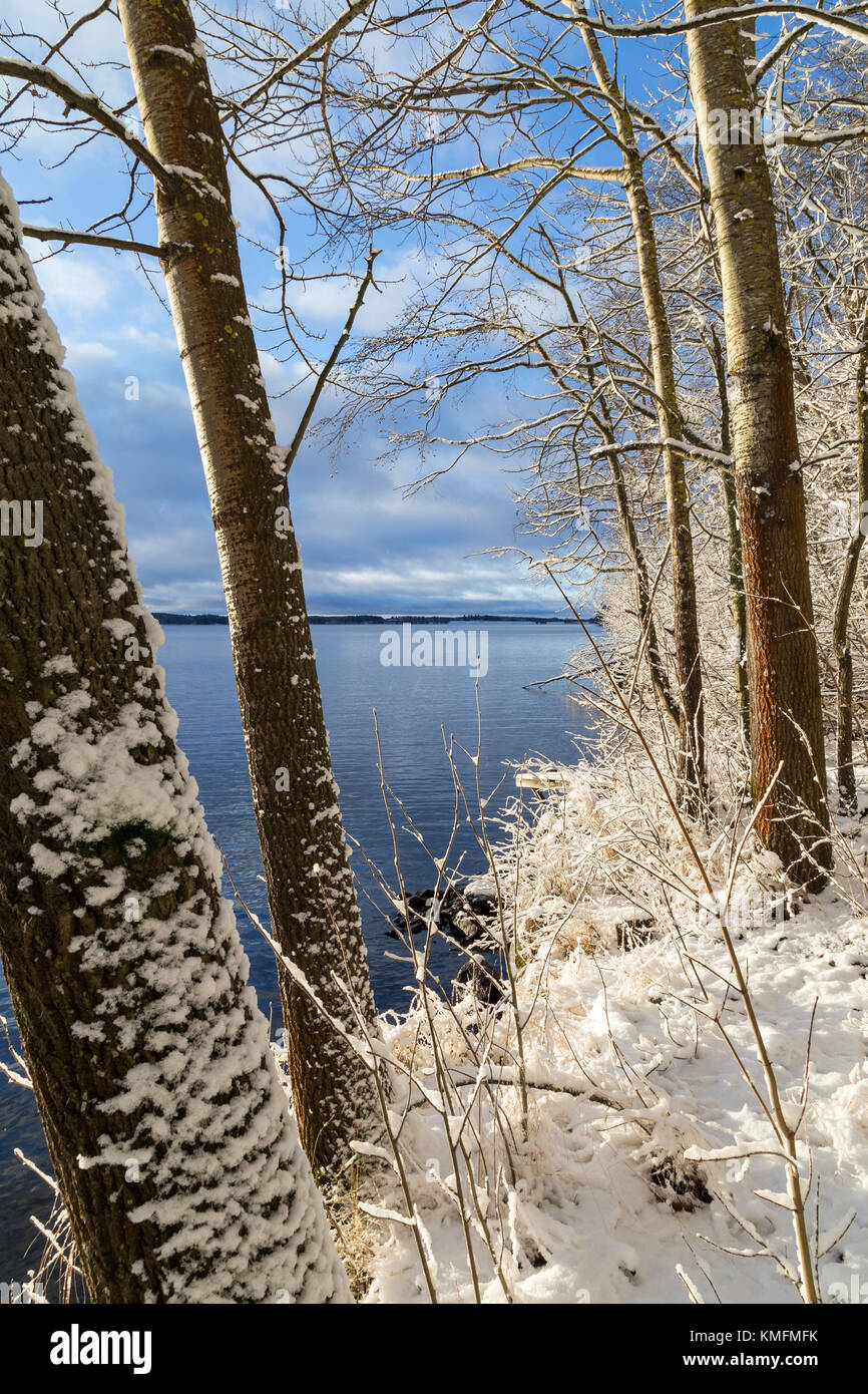 Snowy trees and ground and Lake Pyhäjärvi on a sunny day in the winter in Tampere, Finland. - Stock Image