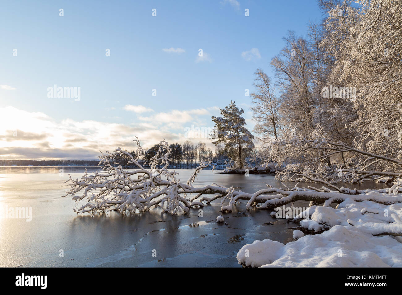 Beautiful view of snowy trees and frozen Lake Pyhäjärvi on a sunny day in the winter in Tampere, Finland. - Stock Image