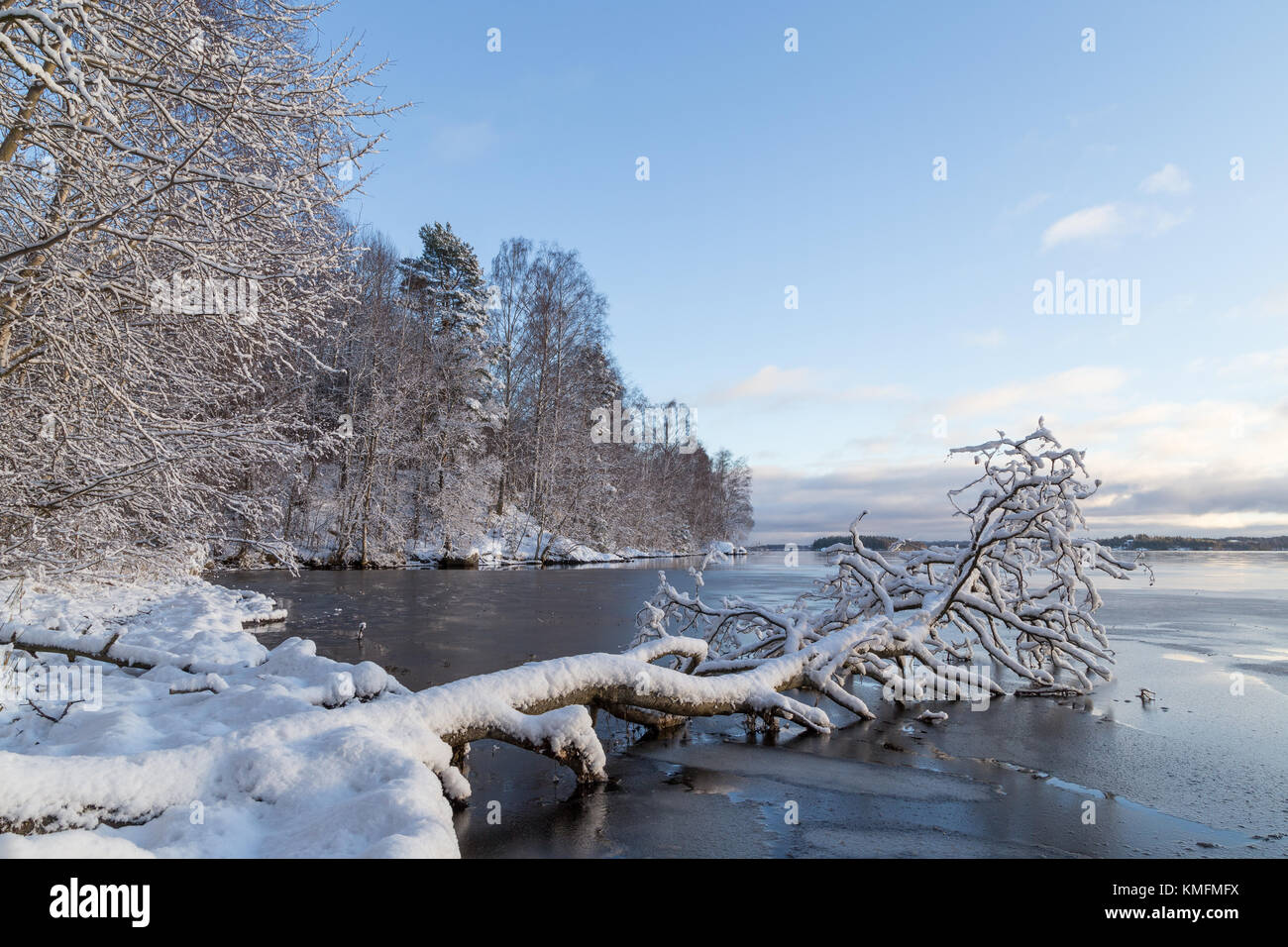 Beautiful view of snowy trees and frozen Lake Pyhäjärvi in the winter in Tampere, Finland. Copy space. - Stock Image