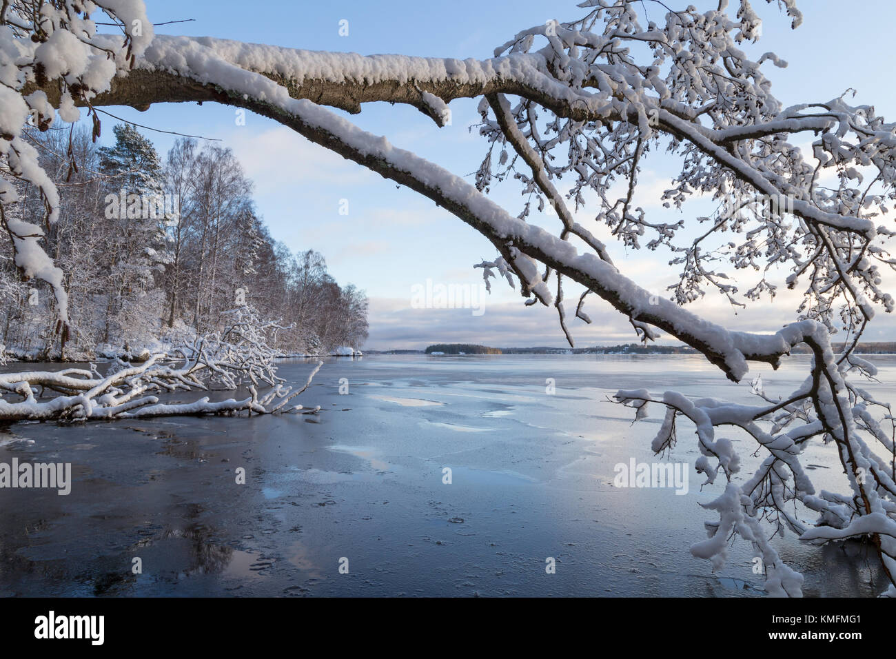 Beautiful view of snowy trees and frozen Lake Pyhäjärvi in the winter in Tampere, Finland. - Stock Image