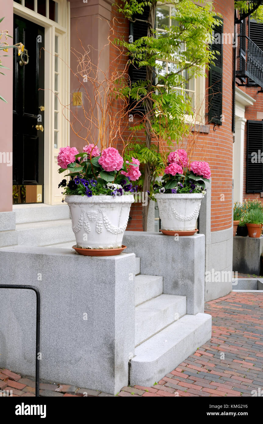 Two planters framing house entry steps Stock Photo: 167539994 - Alamy