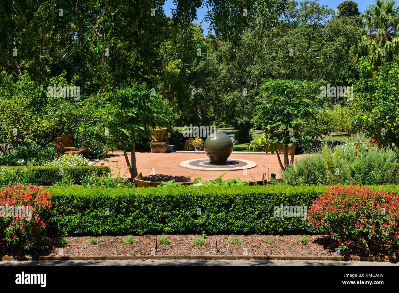 Rose Garden in Royal Botanic Garden Sydney, New South Wales, Australia - Stock Image
