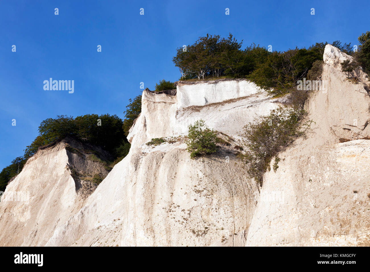Møns Klint, the steep chalk cliffs up to 120m above sea on the eastern Baltic Sea coast of the island Møn - Stock Image