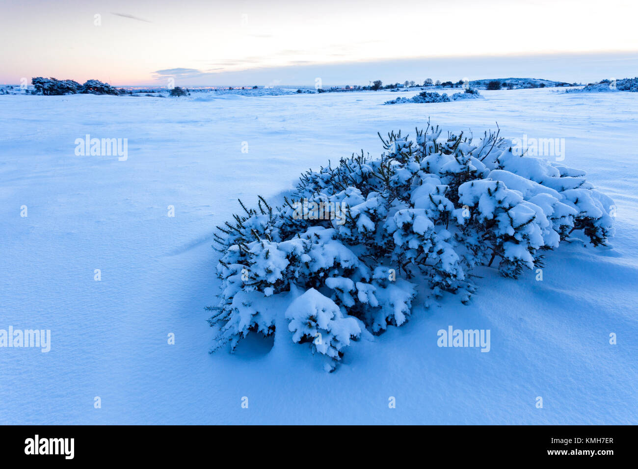 Fresh deep snow over Halkyn Mountain, Flintshire left by Storm Caroline in December as the sun rises in the distance Stock Photo