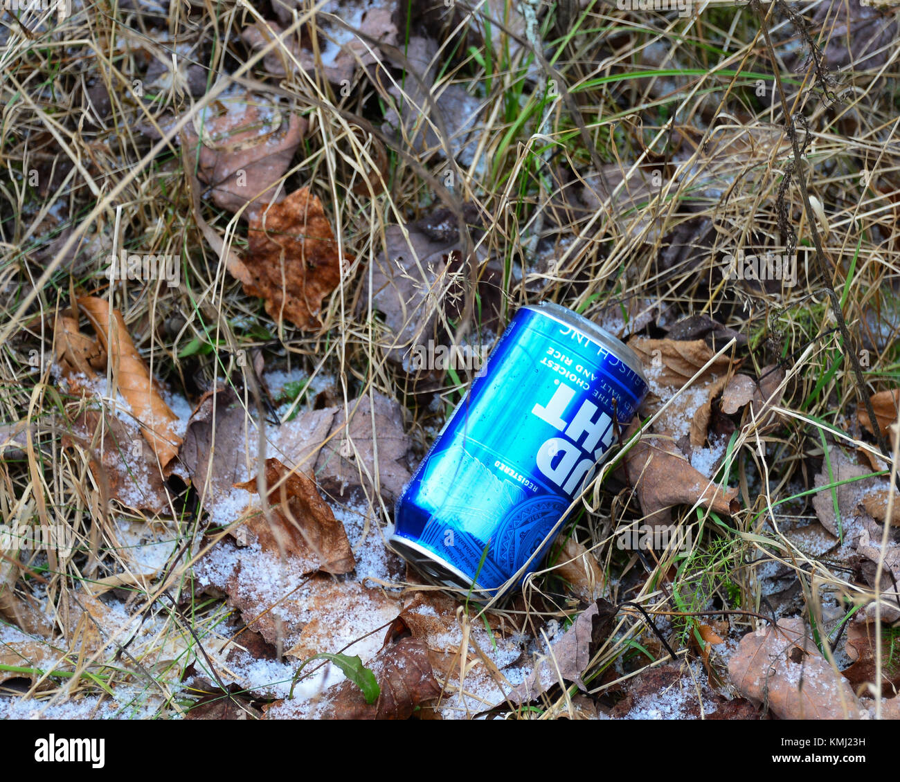 Discarded blue beer can on the side of a forest road in the Adirondack Mountains, NY. - Stock Image