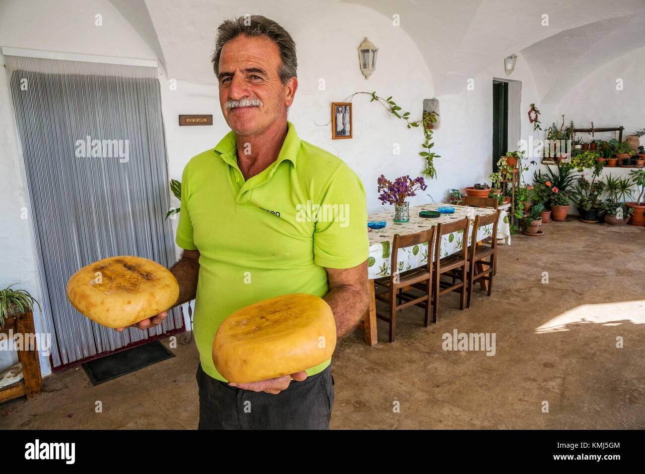 Artisan Cheese, Binicano Property, Ciutadella de Menorca Municipality. Menorca Island. Balearic Islands. Spain - Stock Image