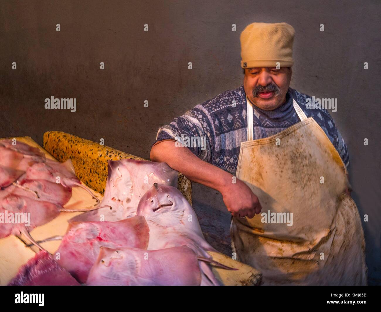 Morocco, Fes, Fishmonger on his stand, at the market of Fes, Jdid, with on the stand very nice ray. - Stock Image