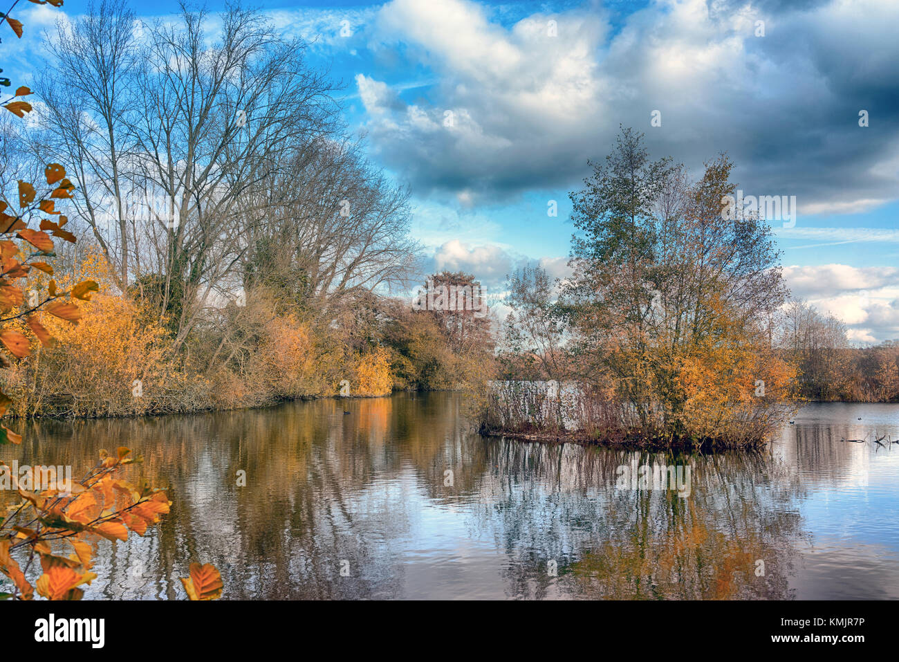 Stockers Lake, Rickmansworth, Hertfordshire, England, UK. Nature reserve and bird sanctuary. A diverse selection - Stock Image
