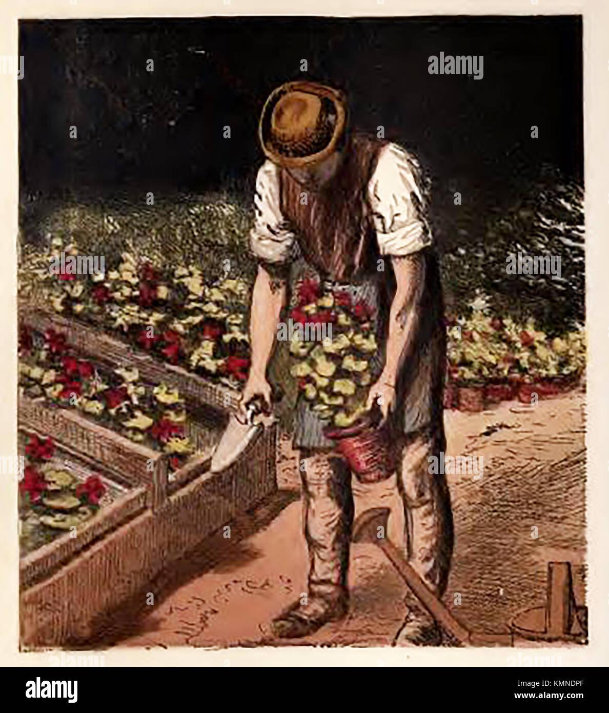Victorian Gardener Stock Photos & Victorian Gardener Stock Images ...