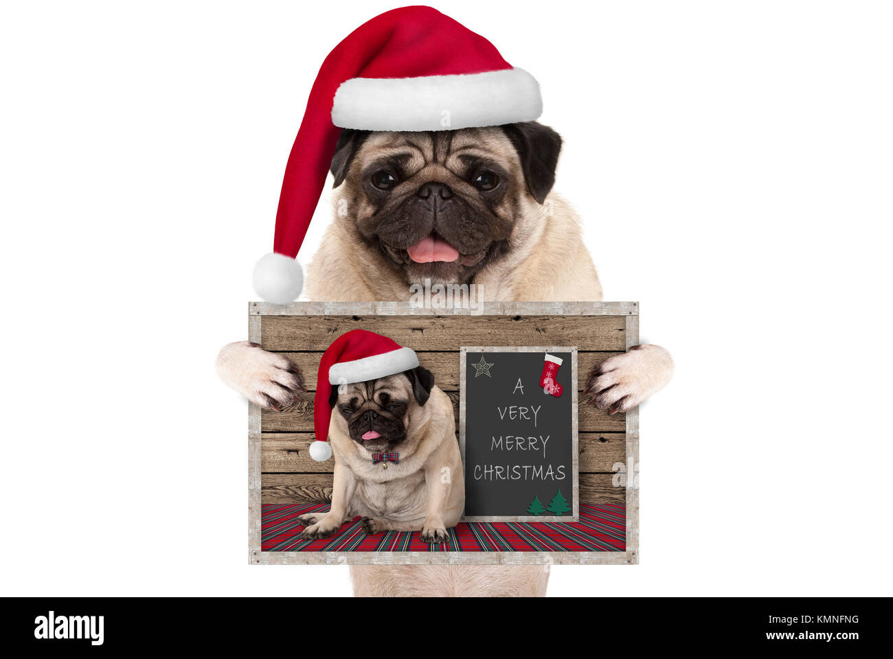 Cute Smiling Christmas Pug Dog With Santa Hat Holding Up Greeting