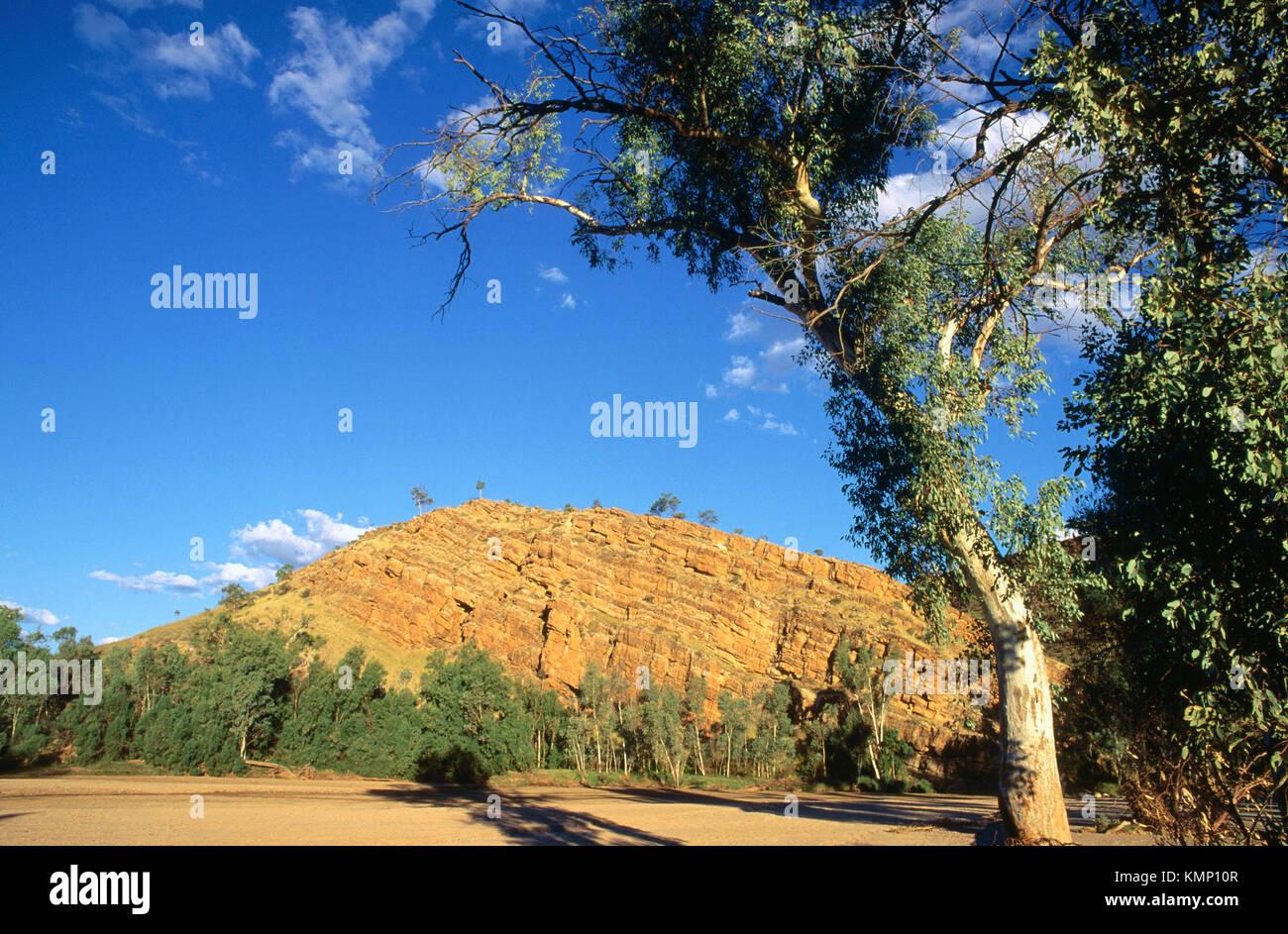 MacDonnell Ranges. Australia - Stock Image