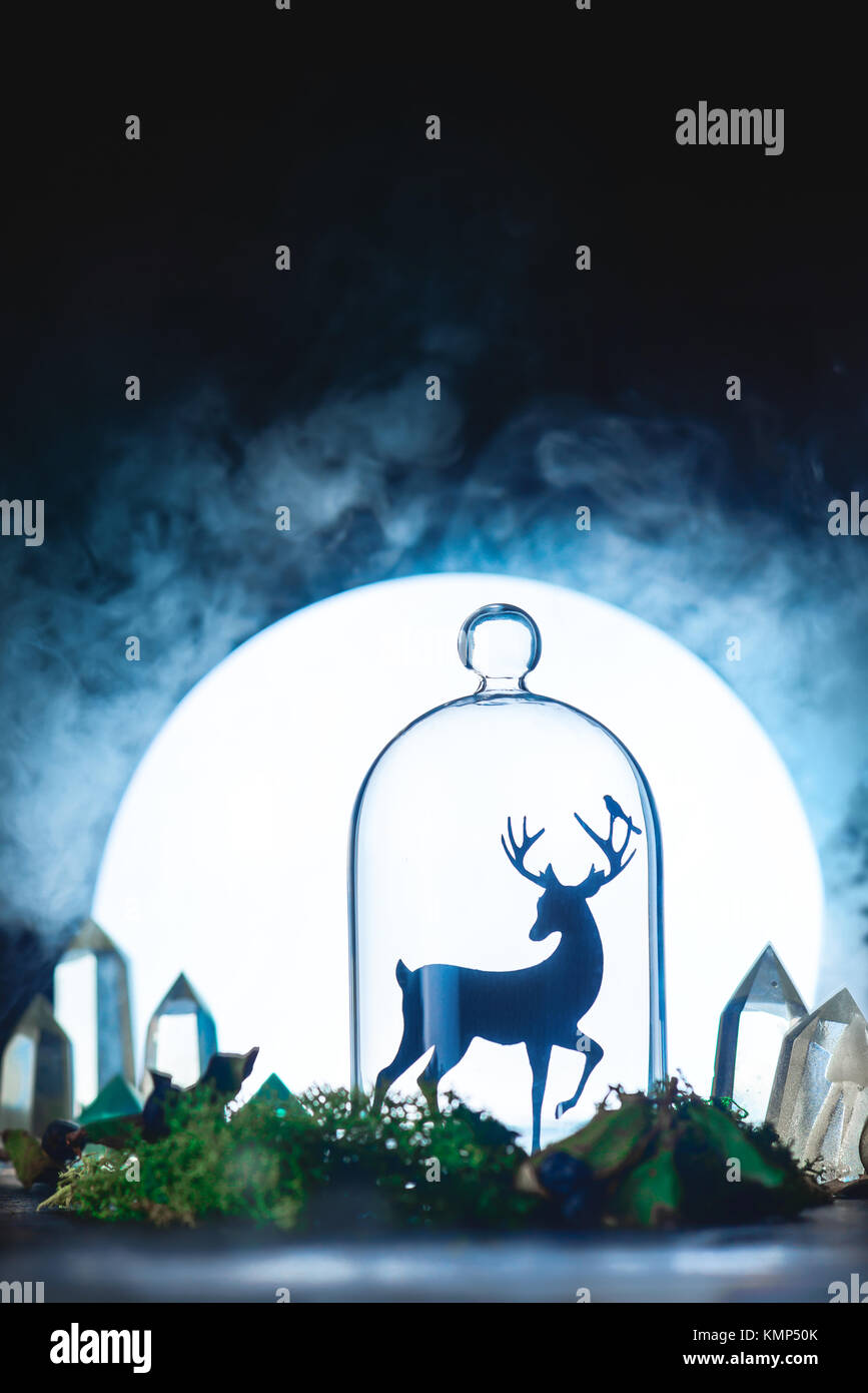 Magical forest with crystals and deer silhouette in a light of full Moon. Still life with glass dome and moss. Fairy - Stock Image