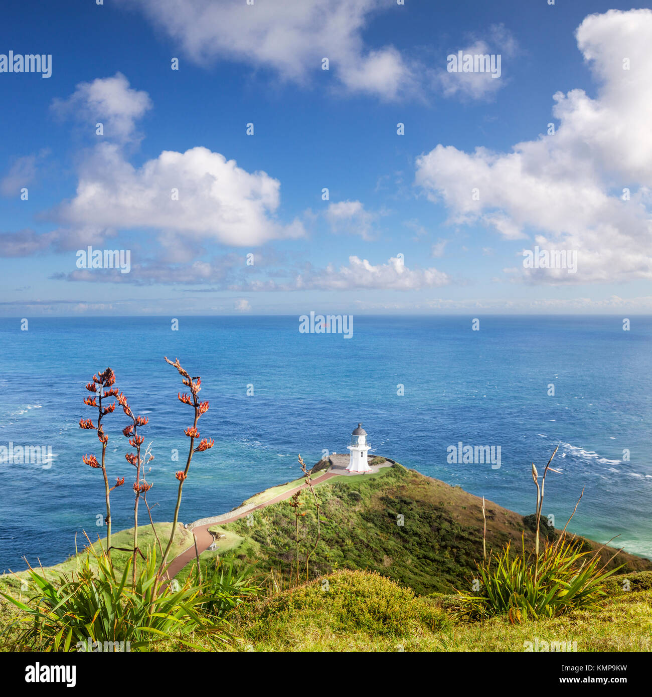 The famous lighthouse at Cape Reinga on a beautiful summer day. In the foreground is New Zealand native flax. - Stock Image