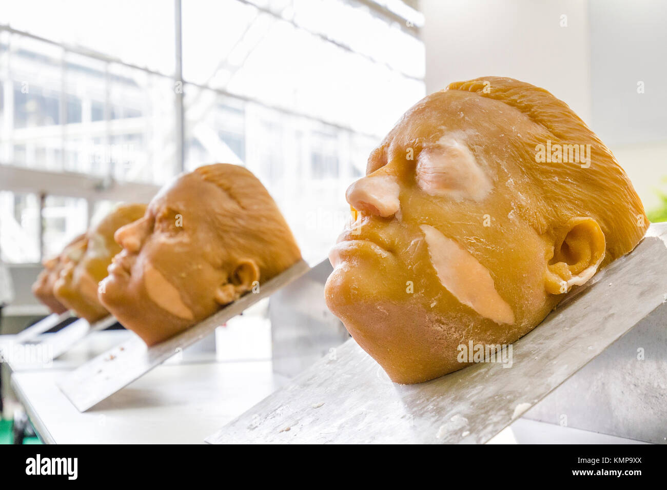 Bologna, BO, Italy - April 3, 2016: Dummies used for the surgical simulations are exposed during the tanexpo 2016 Stock Photo