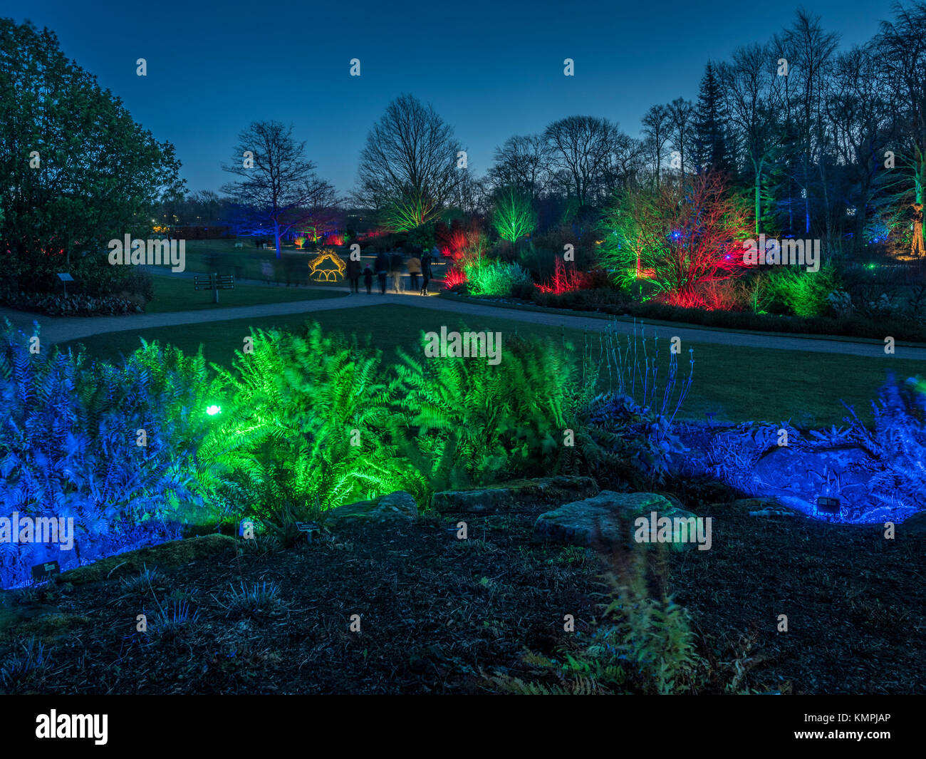 Harlow Carr the most northerly RHS garden is viewed differently this weekend as special lighting effects bring a touch of magic to the shrubs and trees.  sc 1 st  Alamy & Harrogate UK. 8th Dec 2017. Harlow Carr the most northerly RHS ...