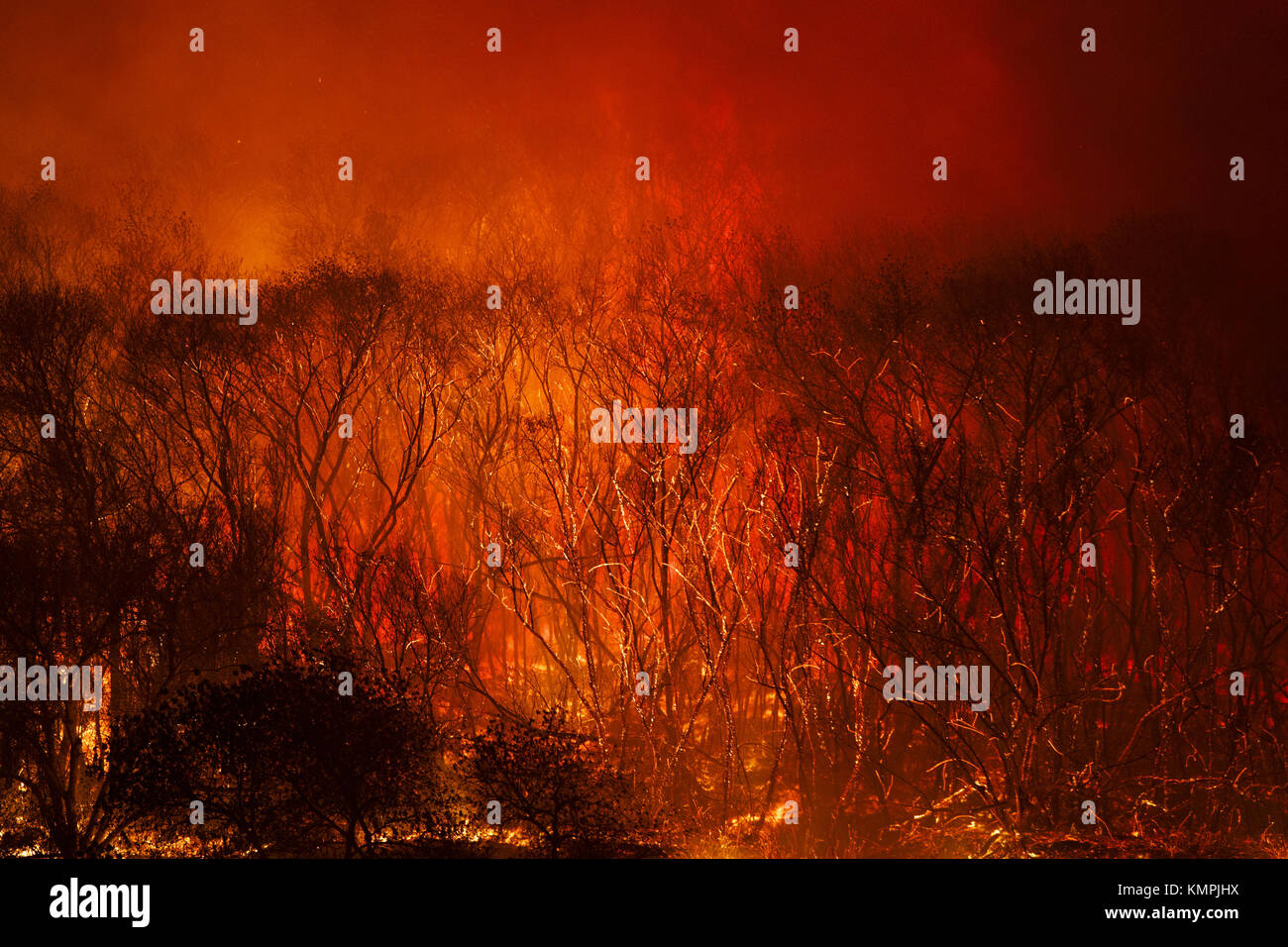 Bonsall, CA, USA. 7th Dec, 2017. The Lilac Fire burns by West Lilac Road on Thursday, December 7, 2017 near Bonsall - Stock Image