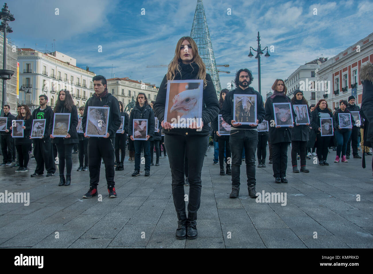 Madrid, Spain. 09th Dec, 2017. animal right demonstration performance in the square sol in the center of Madrid - Stock Image