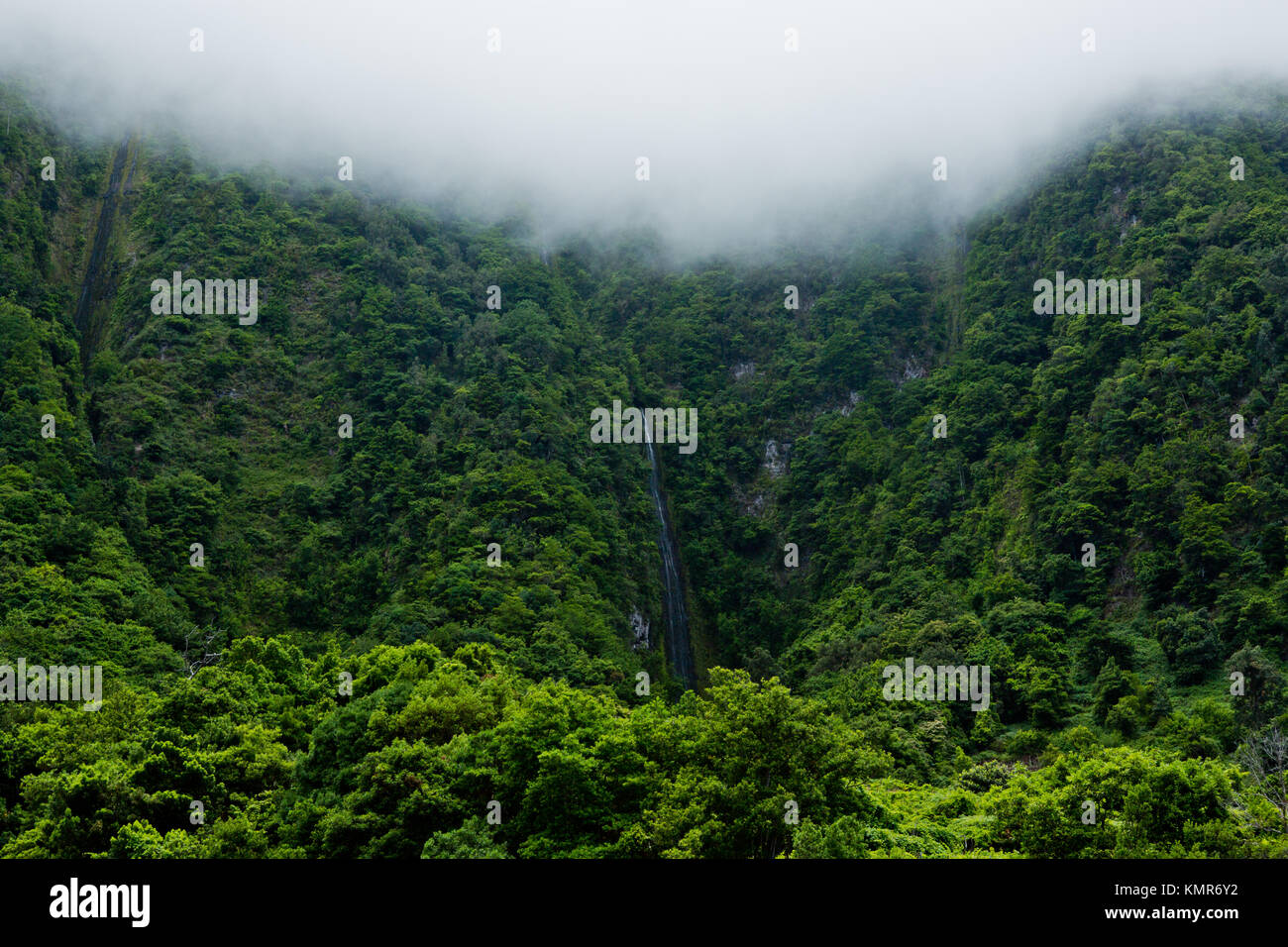 Jungel waterfall mountain - trekking and wandering on levada trails Madeira Portugal - Stock Image