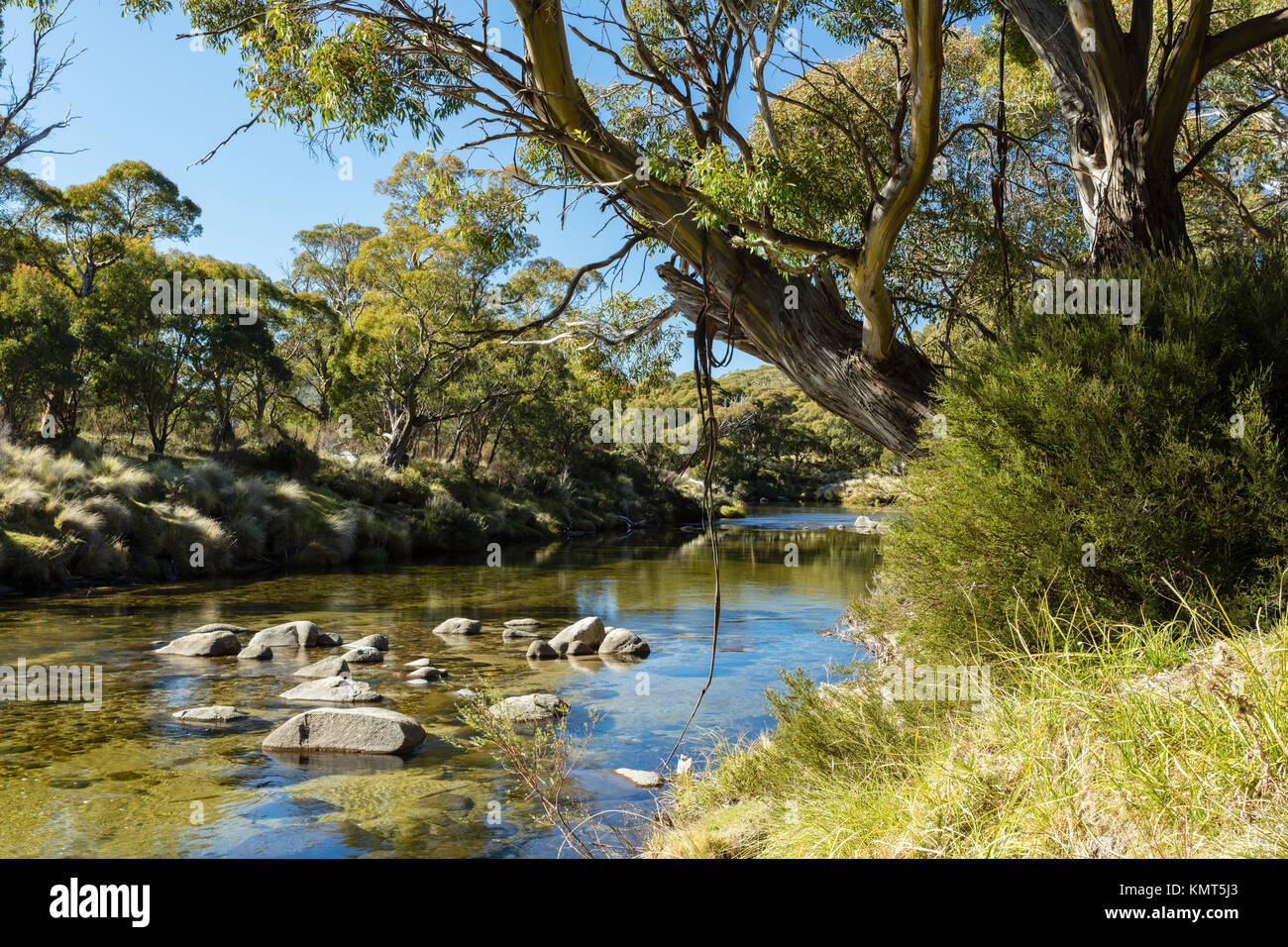 The Thredbo River at Thredbo Diggings in Kosciuszko National Park in the Snowy Mountains in southern New South Wales. Stock Photo