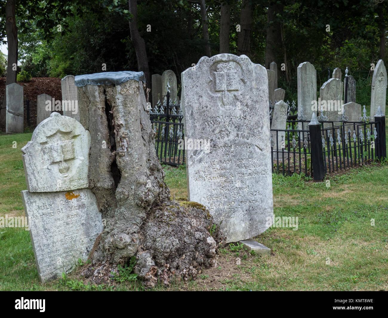 Old French Cemetery, Lunenburg, Nova Scotia, Canada. Stock Photo