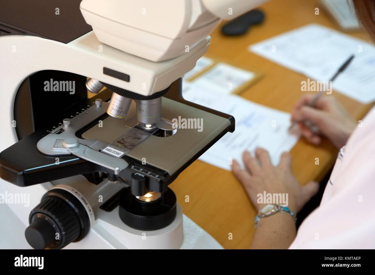 Microscopy, Pathological Anatomy, Hospital de Zumarraga, - Stock Image