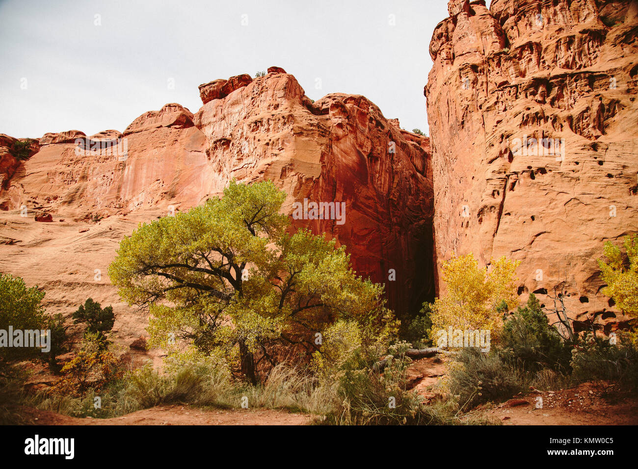 Red rock formations off of the Burr Trail in the Grand Staircase–Escalante National Monument Stock Photo