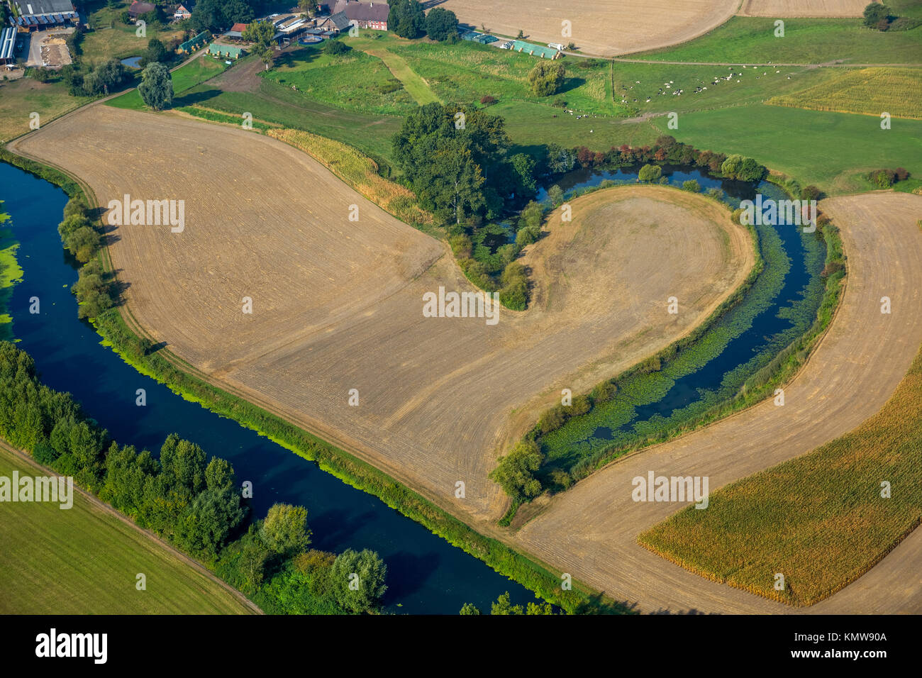 Oxbow lake of the Lippe, half a heart, Lippe meander, Lippeaue,Lippe lawn, hedges, nature reserve, Waltrop, Ruhr - Stock Image