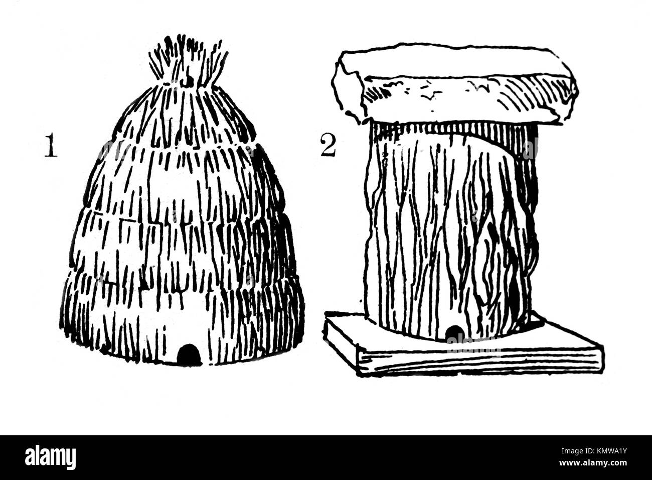 Old Hives Made Of Straw And Cork Book Illustration 1900