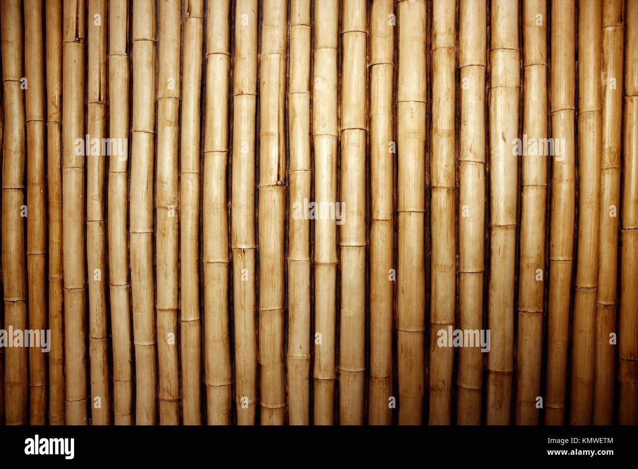 823d96d0374c Bamboo cane row arrangement background pattern Stock Photo ...
