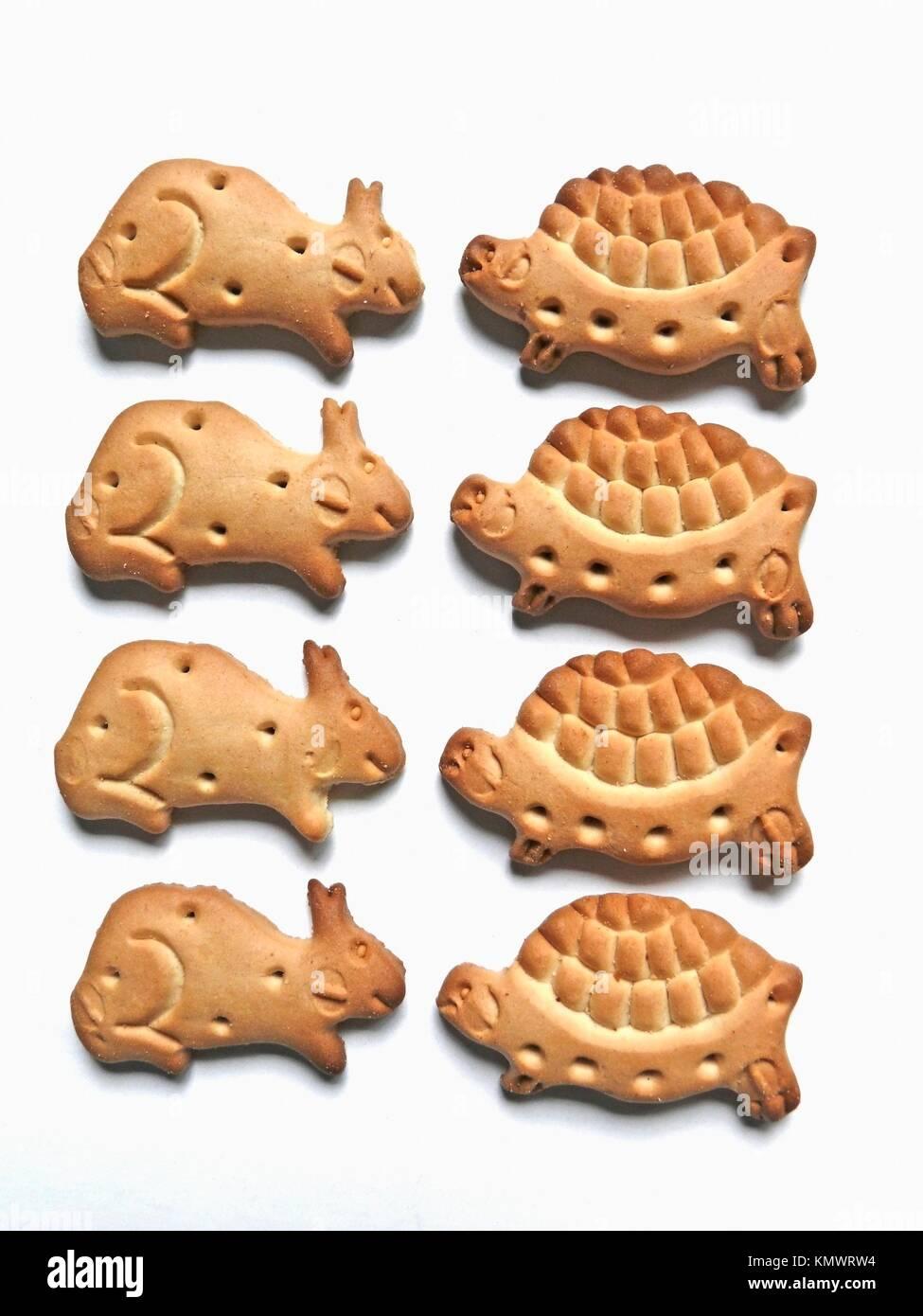 Making Dog Biscuits Uk
