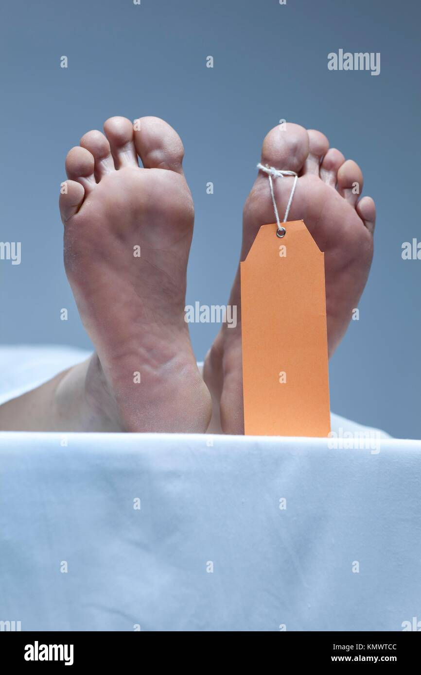 Labeled Feet Of A Corpse In The Morgue - Stock Image