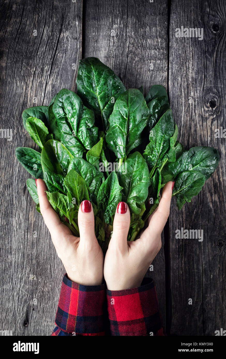 Woman in red holding fresh green spinach on rustic wooden background - Stock Image
