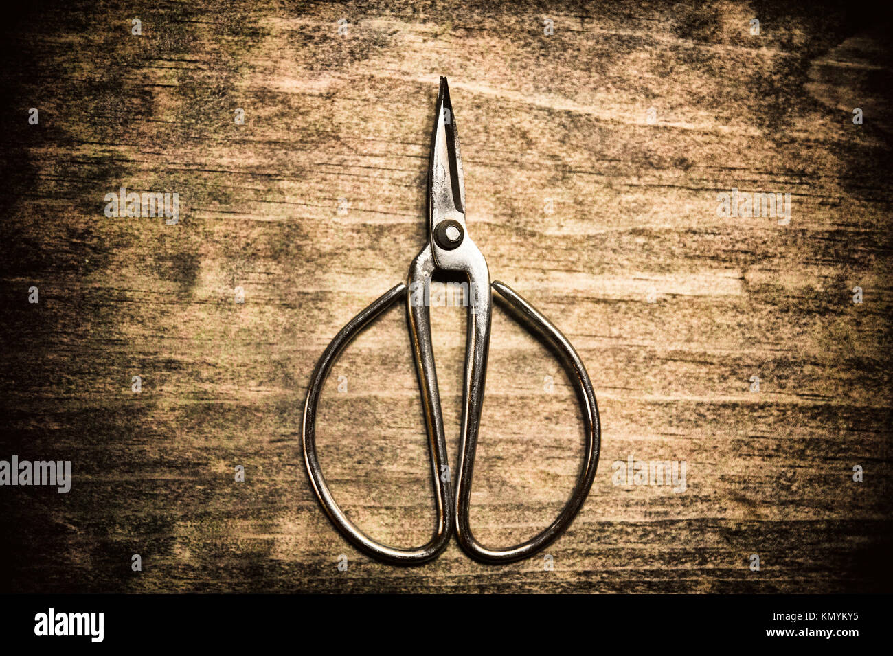 Old pair of scissors on wooden background - Stock Image