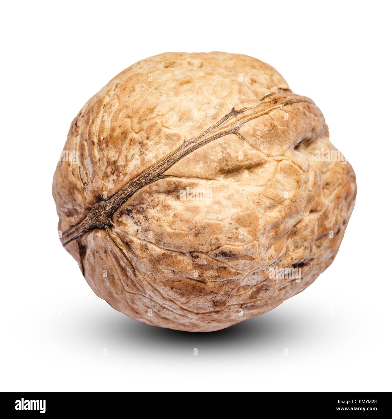 whole walnut isolated on white background. clipping path - Stock Image