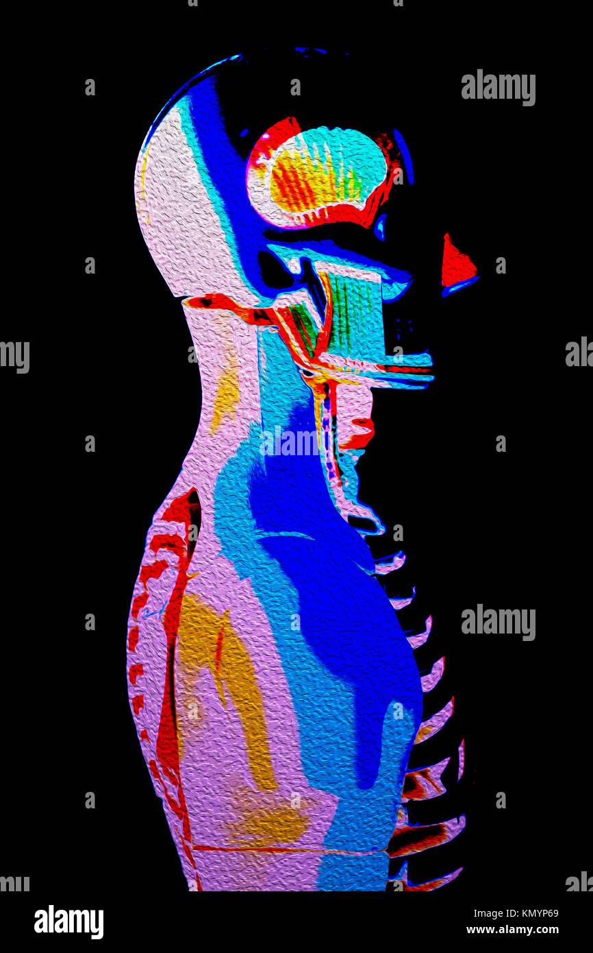 Human Body Anatomy Model 3D illustration on a black background Stock ...