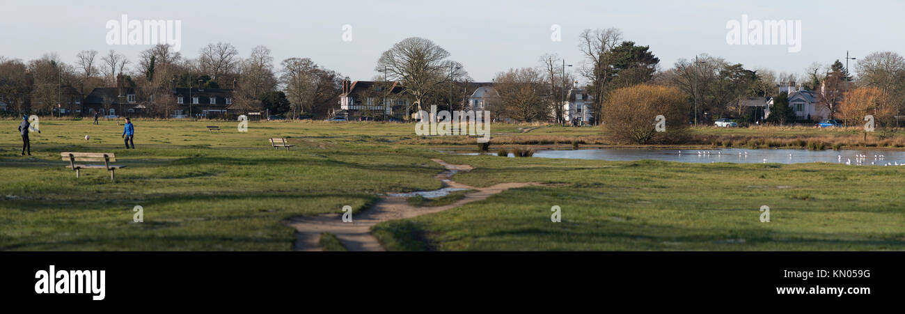 92b2f77664e8a Panoramic view of Wimbledon Common with pond in December 2017, green space  near Wimbledon Village