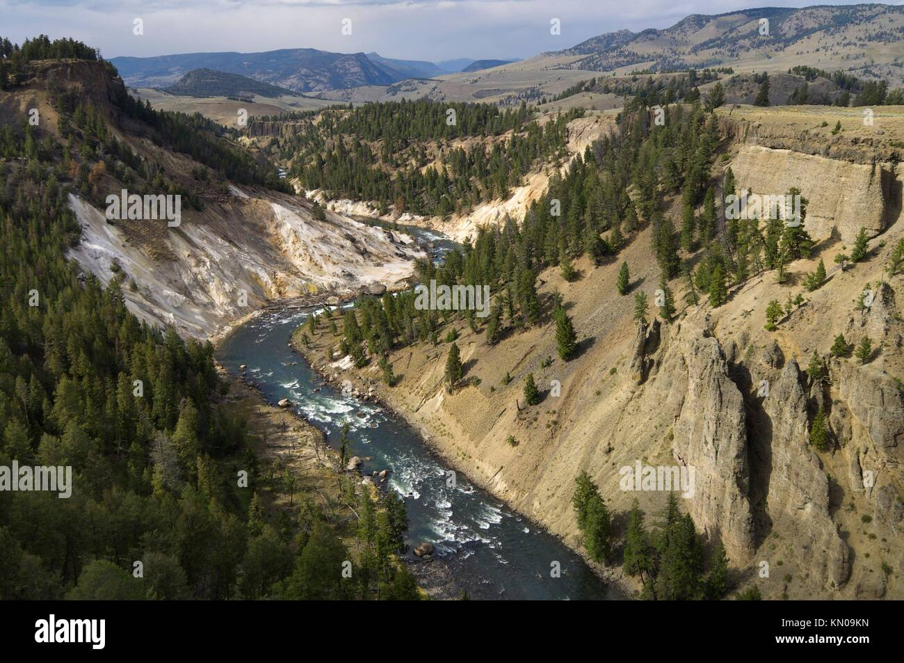 Yellowstone River In Tower Roosevelt Area Yellowstone National Park Stock Photo Alamy