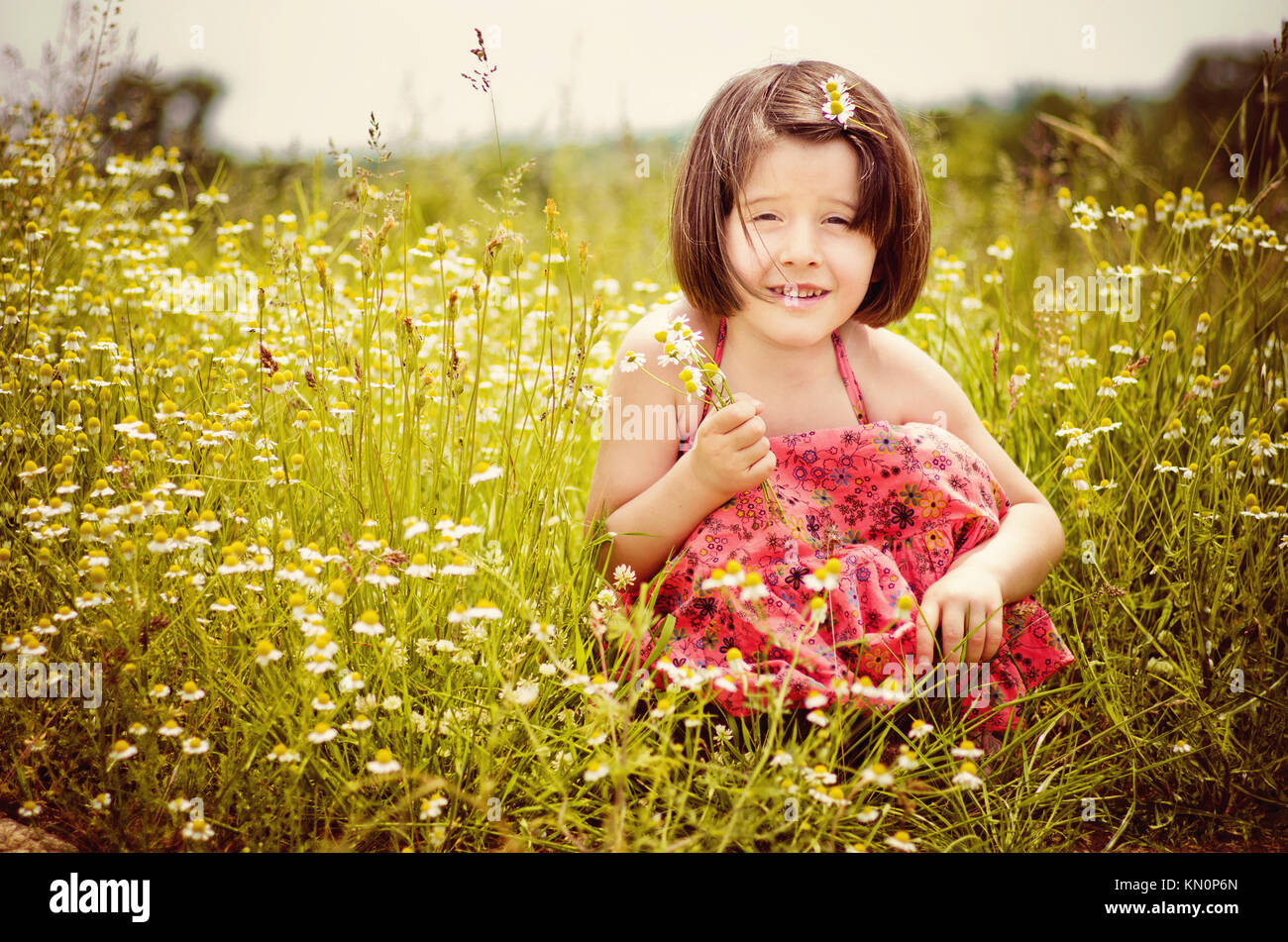 Cute little girl 2-4 years sitting in the grass, holding flowers and smiling. Chamomile bouquet in her hands. Summer - Stock Image