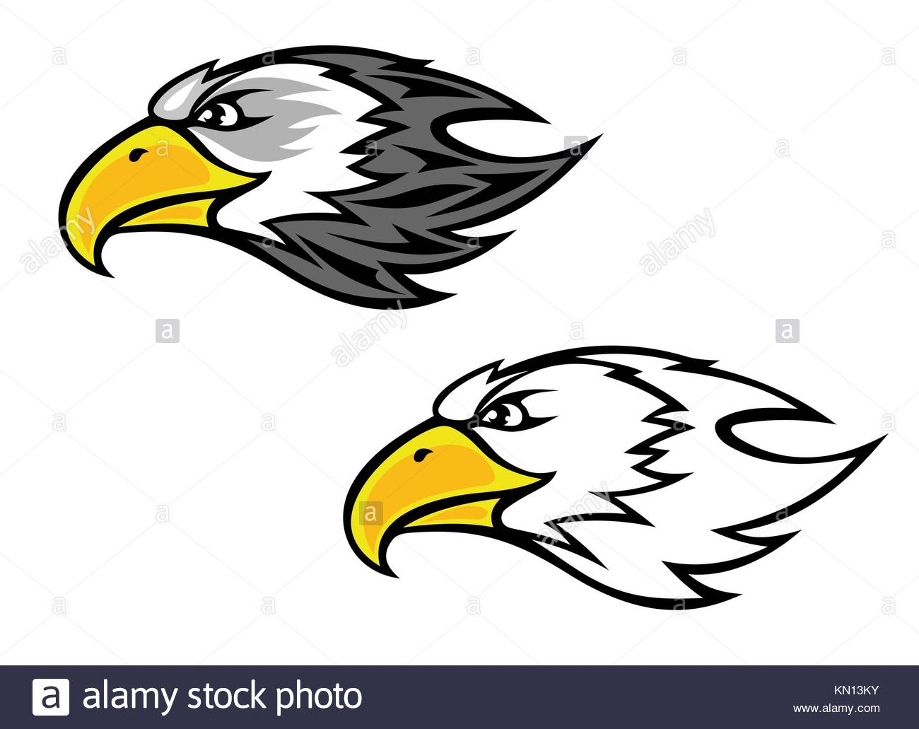 cartoon hawk stock photos cartoon hawk stock images alamy. Black Bedroom Furniture Sets. Home Design Ideas