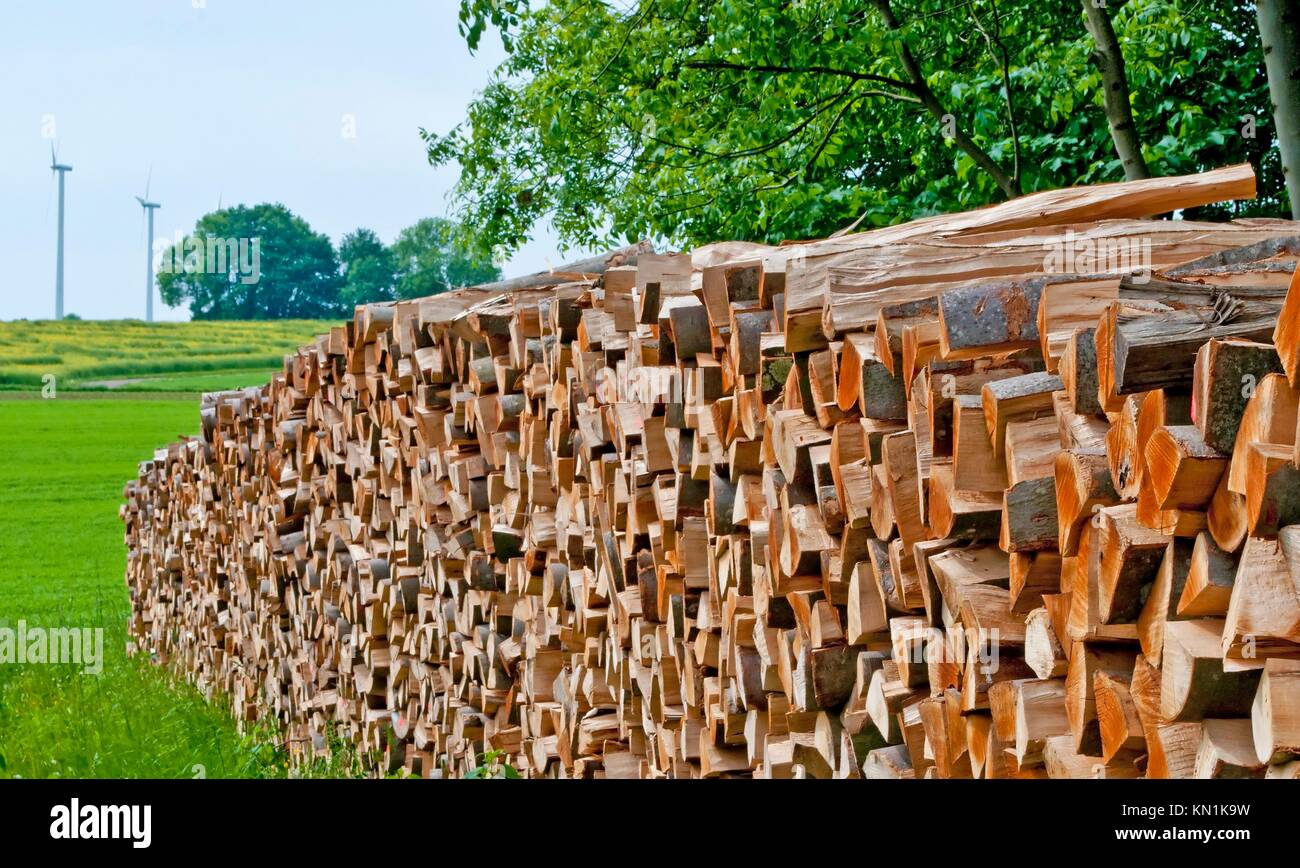 fuel-wood and wind-wheels in Germany Stock Photo