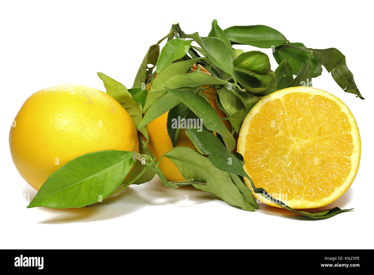 oranges with leaves isolated on white background - Stock Image