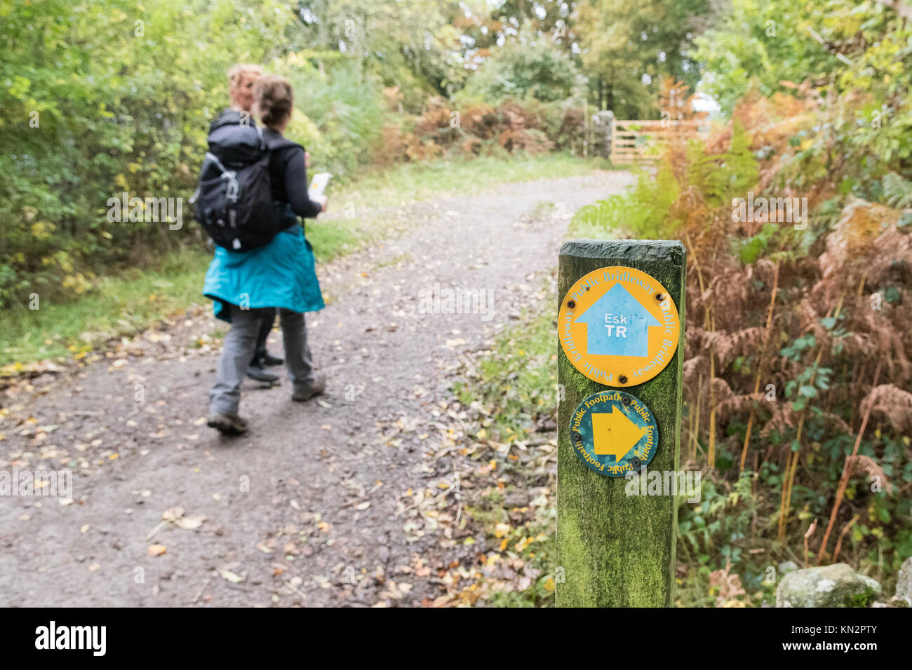 two female walkers on The Eskdale Trail, Lake District, Cumbria, England, UK - Stock Image