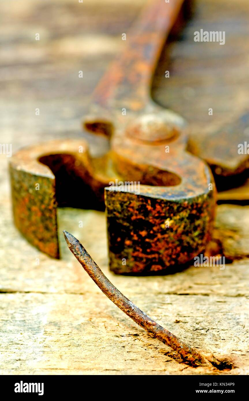 old rusty pliers with nail. - Stock Image