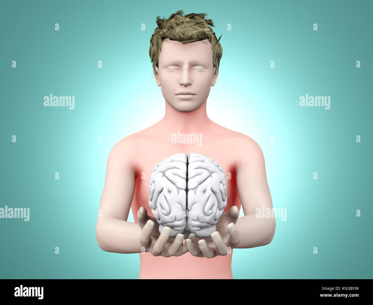 Holding a brain. 3D rendered illustration.. - Stock Image