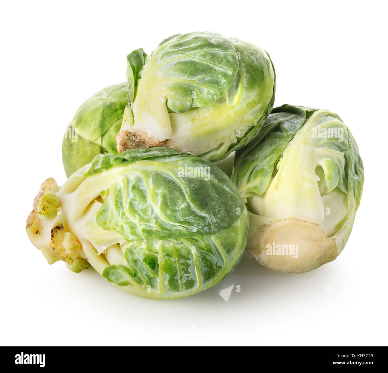 Brussel sprouts isolated on a white background. - Stock Image